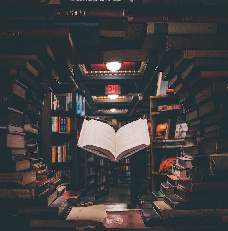 los arquetipos en la novela